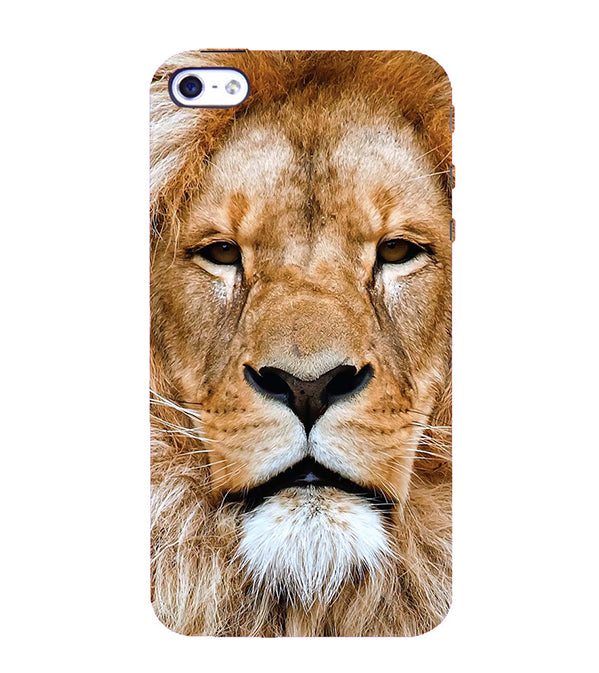 Portrait of Lion Back Cover for Apple iPhone 4 : 4S