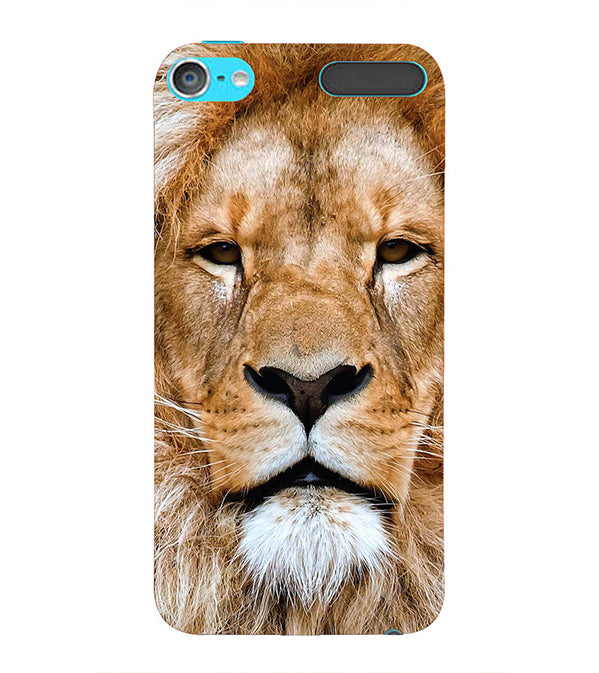Portrait of Lion Back Cover for Apple iPod Touch 6