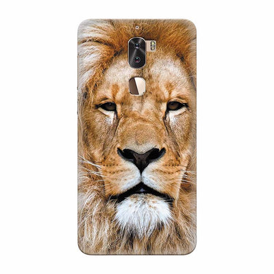 Portrait of Lion Back Cover for Coolpad Cool 1