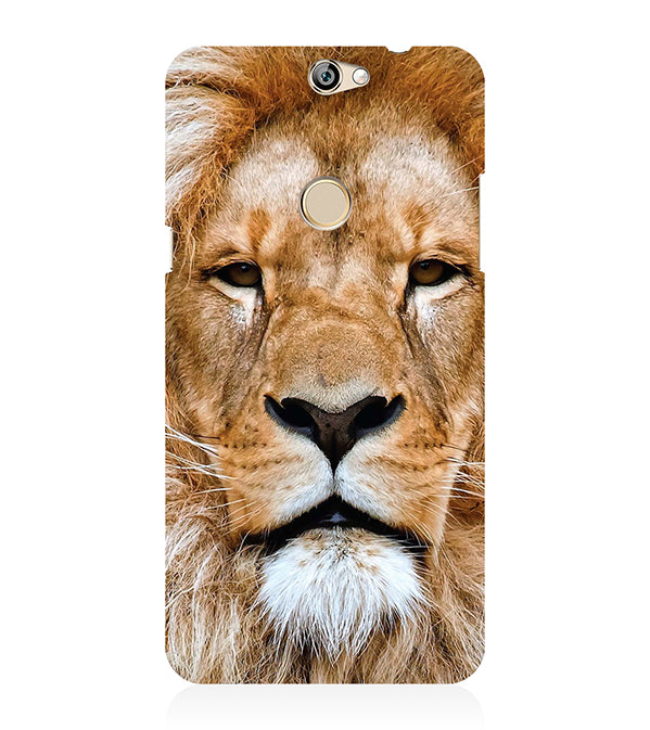 Portrait of Lion Back Cover for Coolpad Max