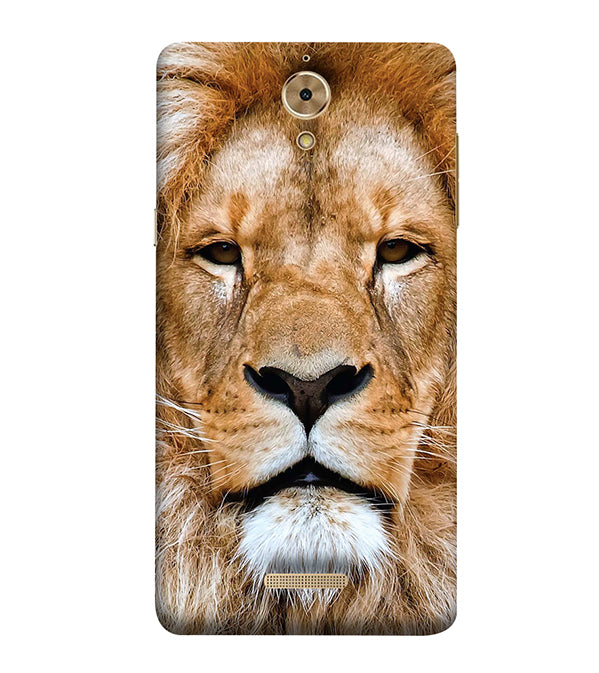 Portrait of Lion Back Cover for Coolpad Mega 2.5D