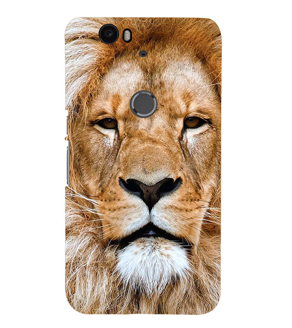 Portrait of Lion Back Cover for Google Nexus 6P