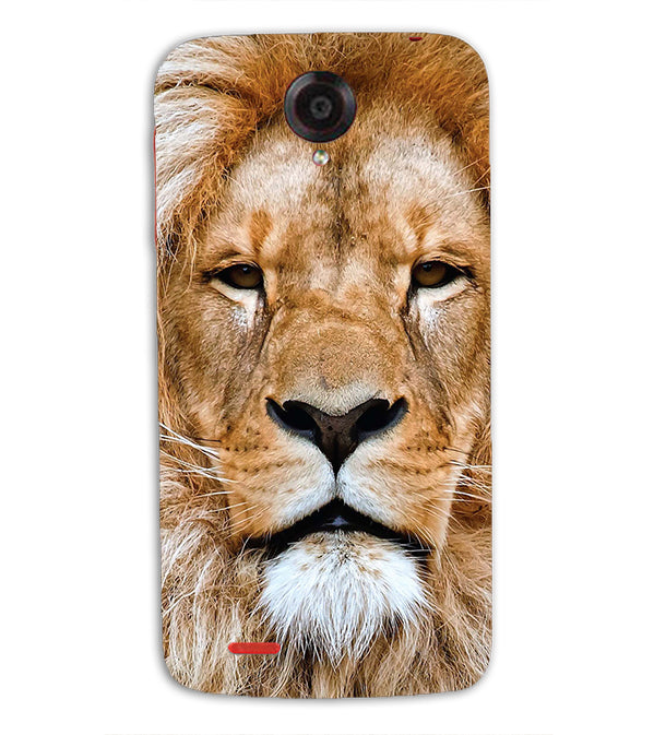 Portrait of Lion Back Cover for Lenovo S820