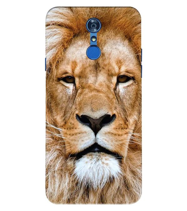 Portrait of Lion Back Cover for LG Q7