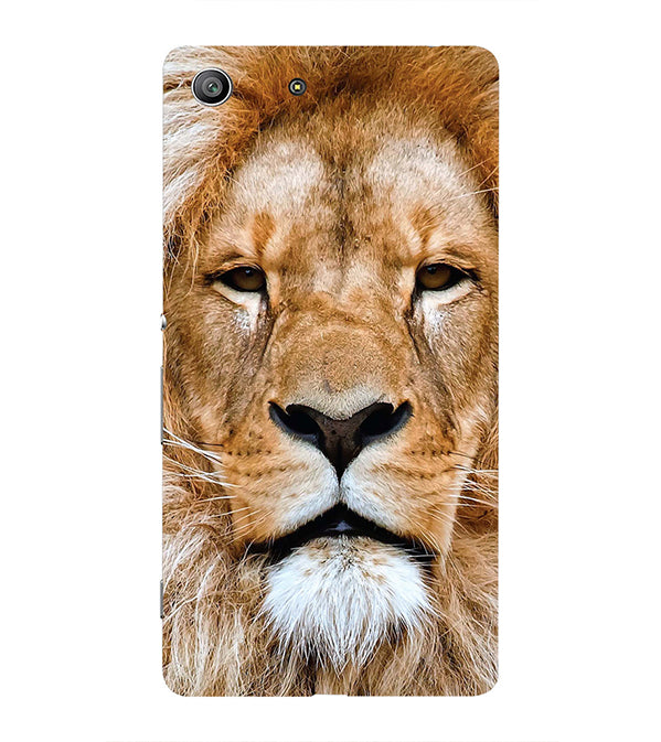 Portrait of Lion Back Cover for Sony Xperia Z3 Compact