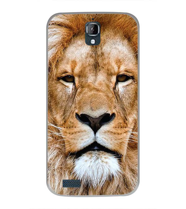 Portrait of Lion Back Cover for Panasonic Eluga Icon