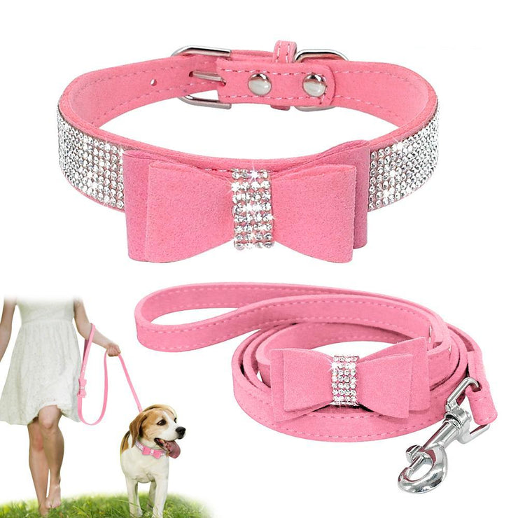 Swaggy Pet Collar & Leash