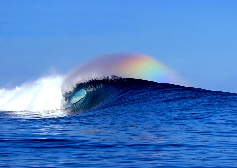 Fiji Wave Spotlight