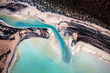 Natures Art Shark Bay