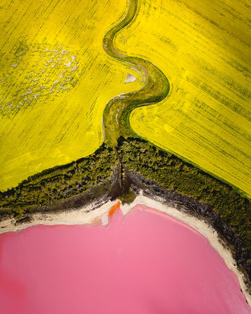 Pink Lake topdown in Australia