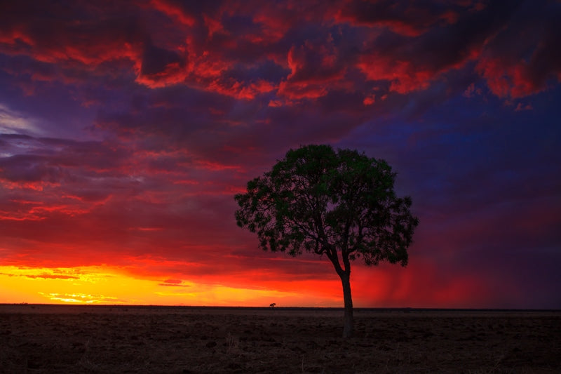 Red Outback Sunset