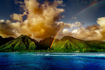 Teahupoo Rainbow Bliss