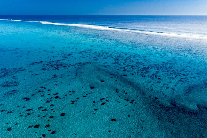 South Pacific Shallows