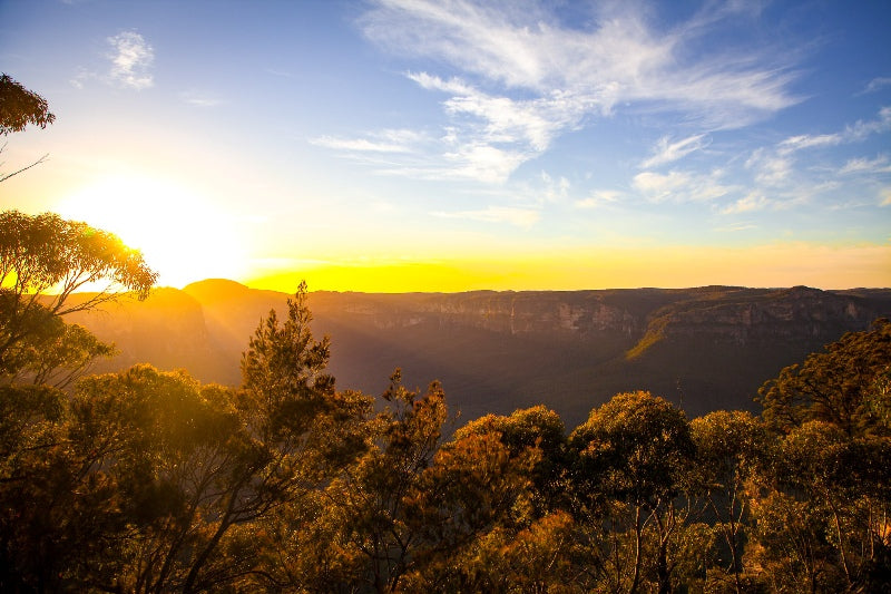 Sunrise in the Blue Mountains