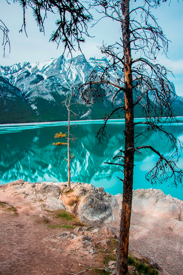 Lake Minnewanka Reflections