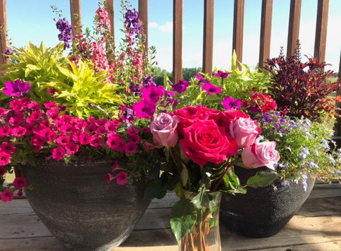 Mothers day gift idea Flowers and container flowers, plants