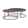Catalina Nesting Coffee Table - Copper Cla