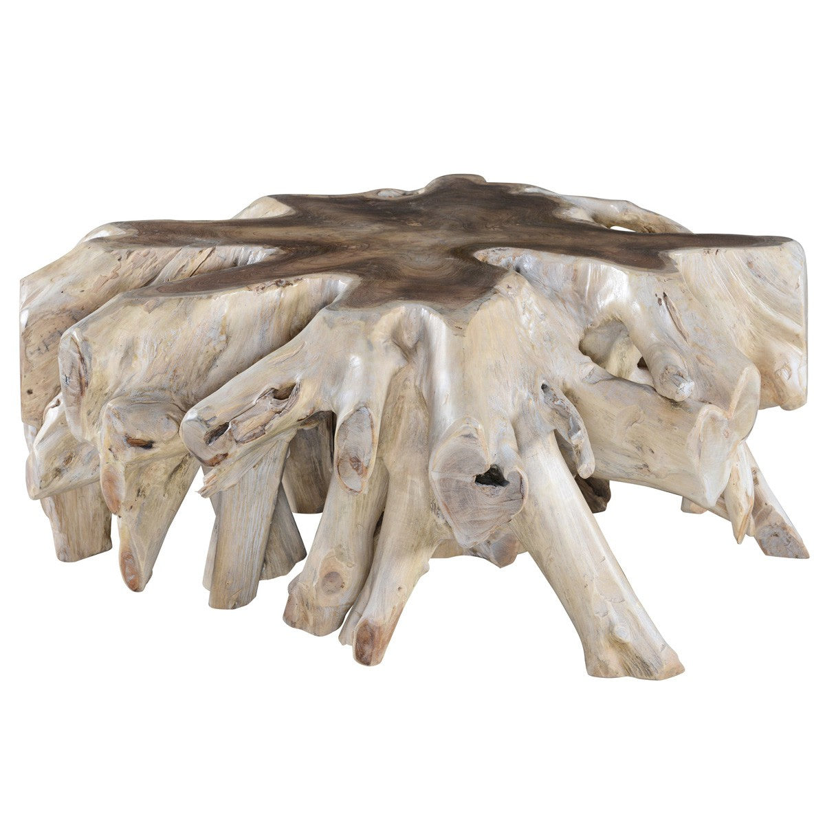 Cypress Root Coffee Table