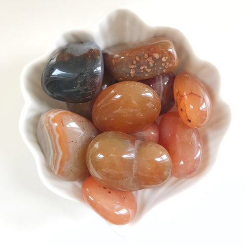 Large Tumbled Carnelian Agate - Gemstones&Co
