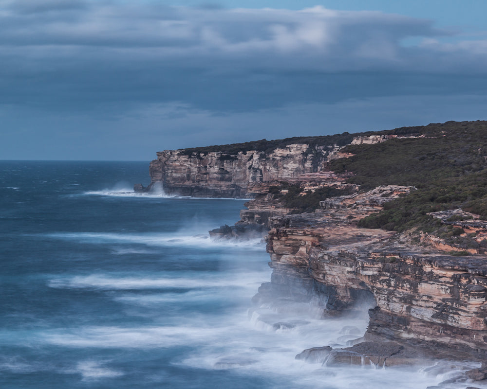 'a windy day in the royal national park' by Bryson Prior