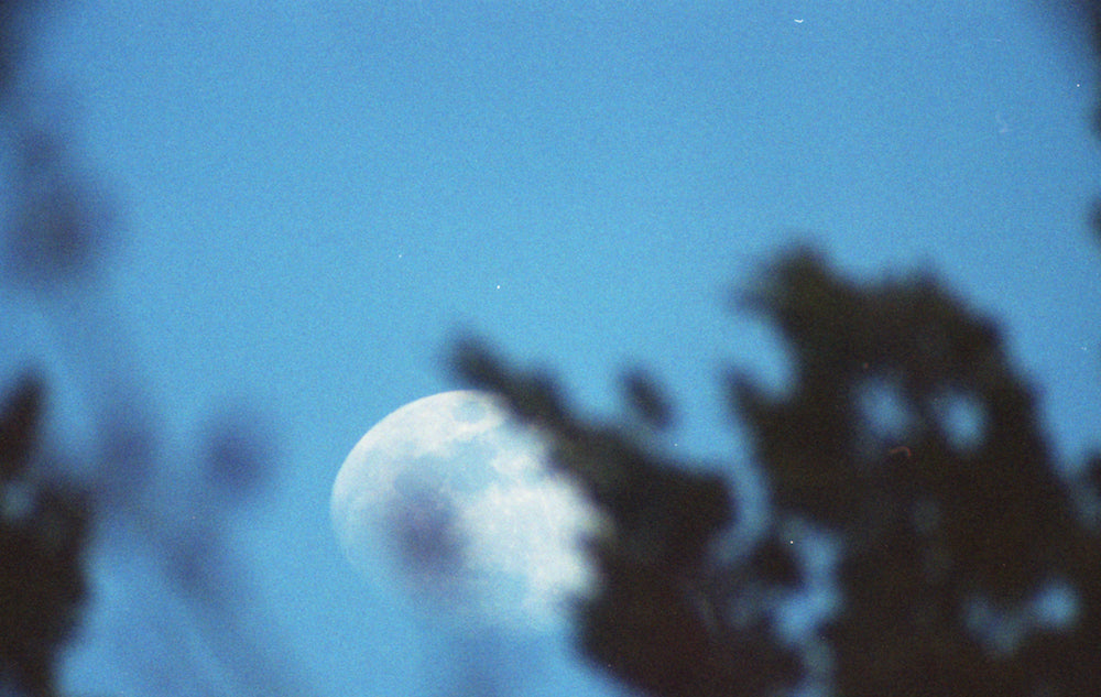 'Moon from Douglas Park, Vancouver' by Ian McCartney