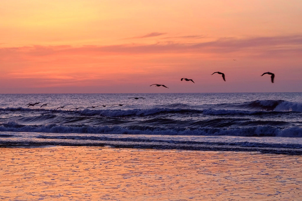 'Peekaboo sunrise Wrightsville Beach, North Carolina' by Socrates Gliarmis