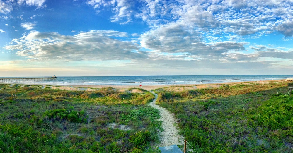 'Morning Glory Atlantic Beach North Carolina' by Socrates Gliarmis