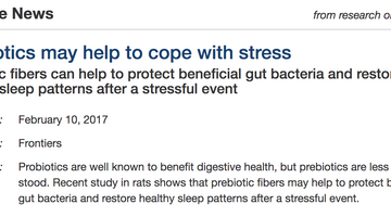 Prebiotics to help cope with stress!
