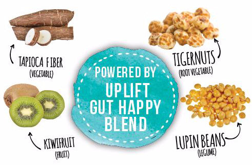 uplift food gut happy cookies gut healthy proprietary blend resistant starch soluble fiber flavonoid probiotics