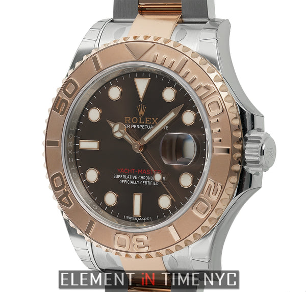 Stainless Steel Everose Gold Bezel 40mm Chocolate Dial
