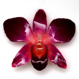 Purple Pink Dendrobium Orchid necklace