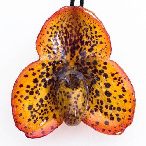 Red Yellow Paph Bellatulum Orchid necklace