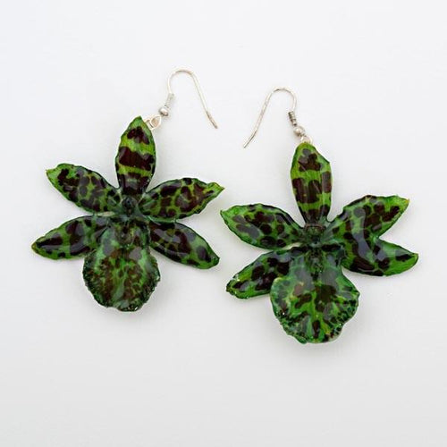 Green Tiger Orchid Earrings