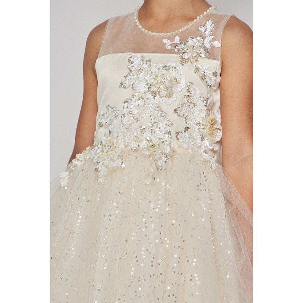 ILLUSION NECKLINE WITH RAISED METALLIC FLOWERS ON BODICE