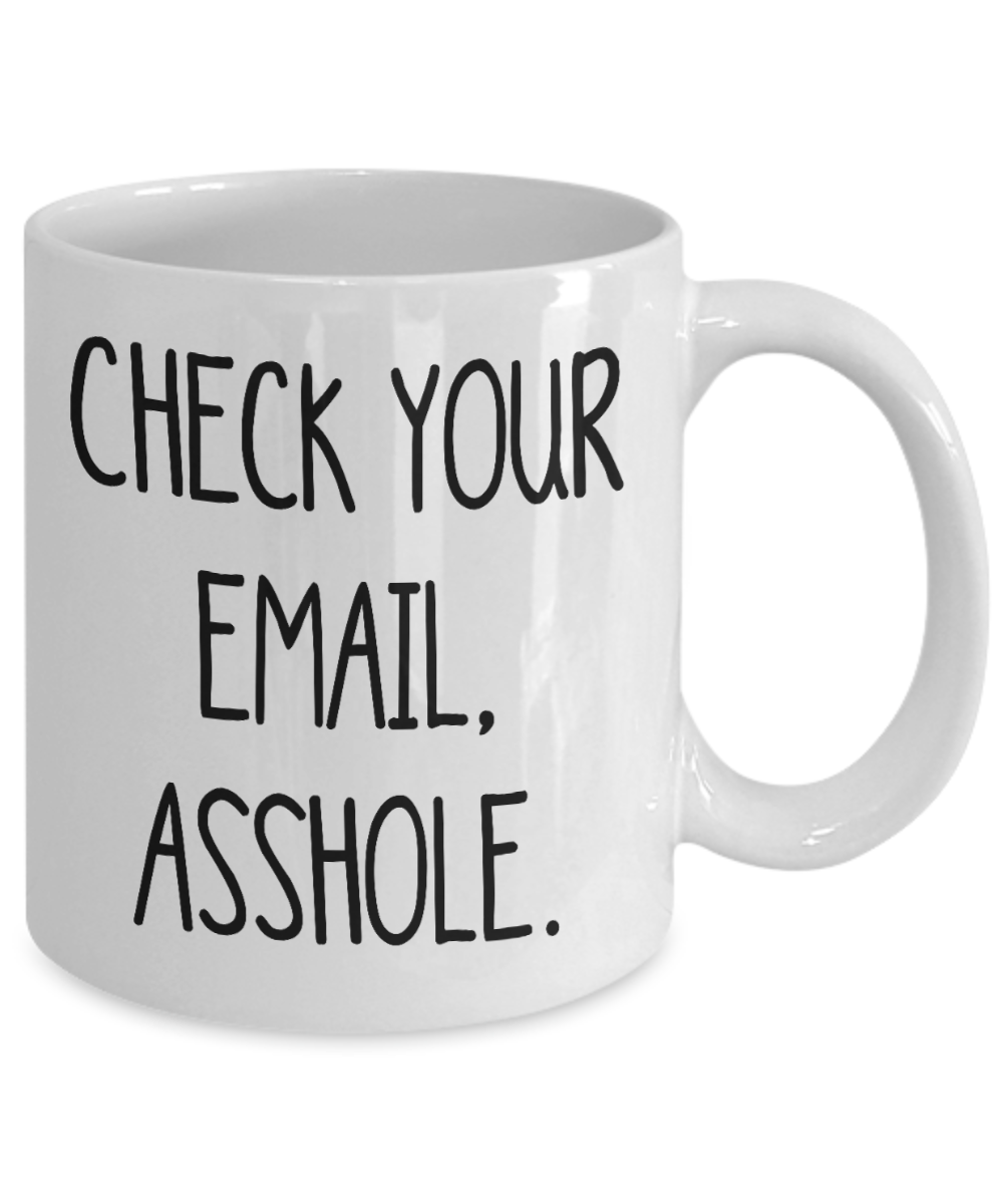 Funny Work Mug Check Your Email Asshole