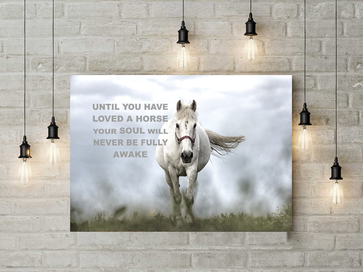 Stunning Horse Lover Canvas Art Until You Have Loved A Horse