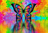 Colorful Rainbow Butterfly Diamond Painting Kit