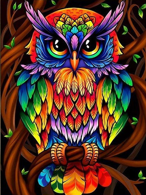 Wise Rainbow Owl Hippie Diamond Painting Kit