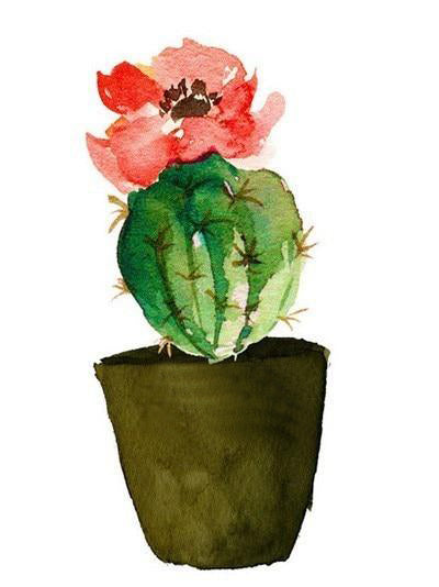Cacti Diamond Painting Starter Kit ~ 8x10