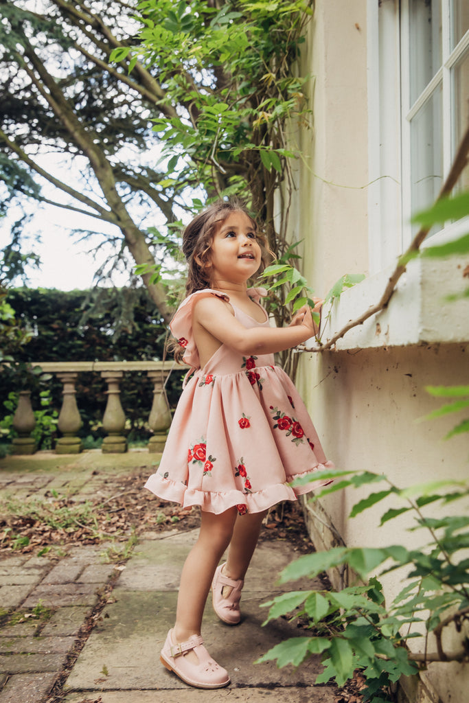 Summer rose embroidery dress on blush crepe with frill sleeves.