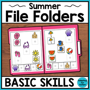 Summer Basic Skills File Folder Activities