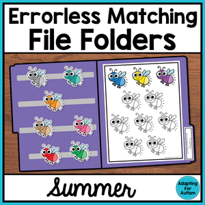 Errorless Summer File Folder Activities