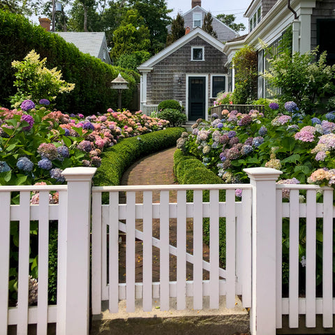 nantucket architecture hydrangea Ellis Wilson designs handbags made in USA Ellis Wilson