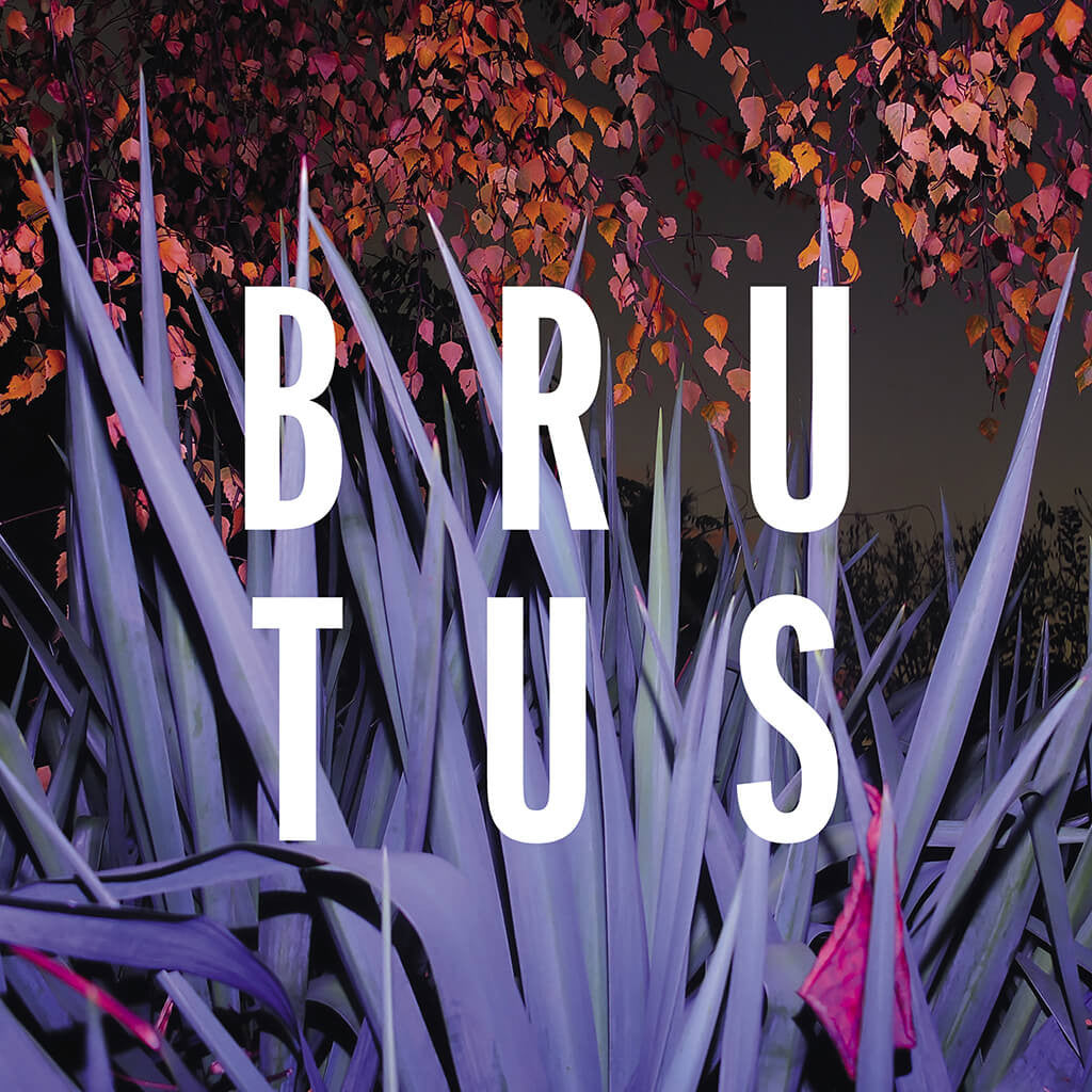 Burst CD - BRUTUS - Hello Merch