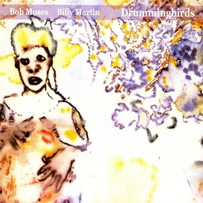 Bob Moses & Billy Martin - Drummingbirds CD