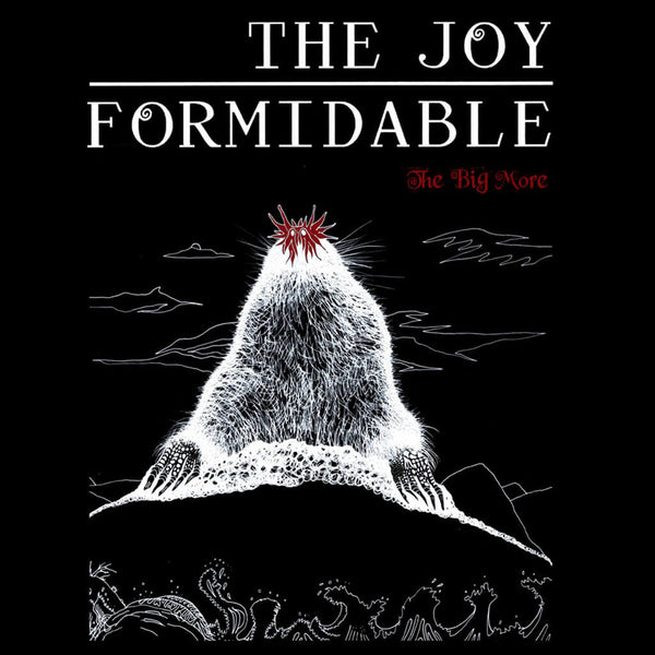 The Big More EP Digital by The Joy Formidable for sale on hellomerch.com