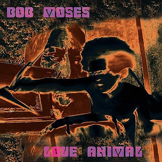 Bob Moses - Love Animal CD - Billy Martin - Hello Merch