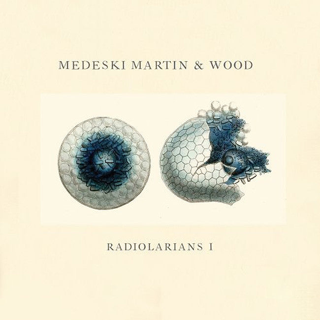 Radiolarians I CD - Medeski Martin & Wood - Hello Merch