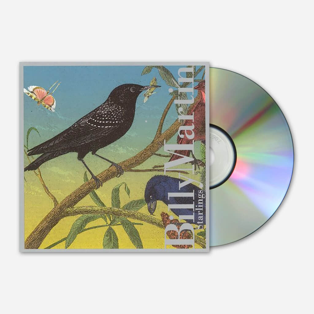 Starlings CD - Billy Martin - Hello Merch