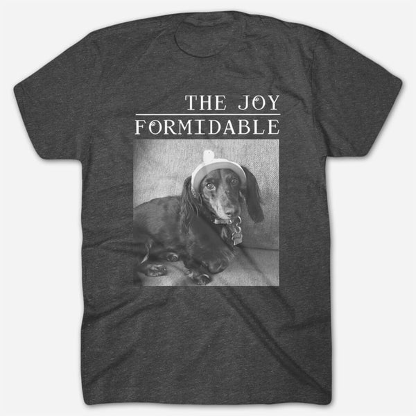 Tony T by The Joy Formidable for sale on hellomerch.com